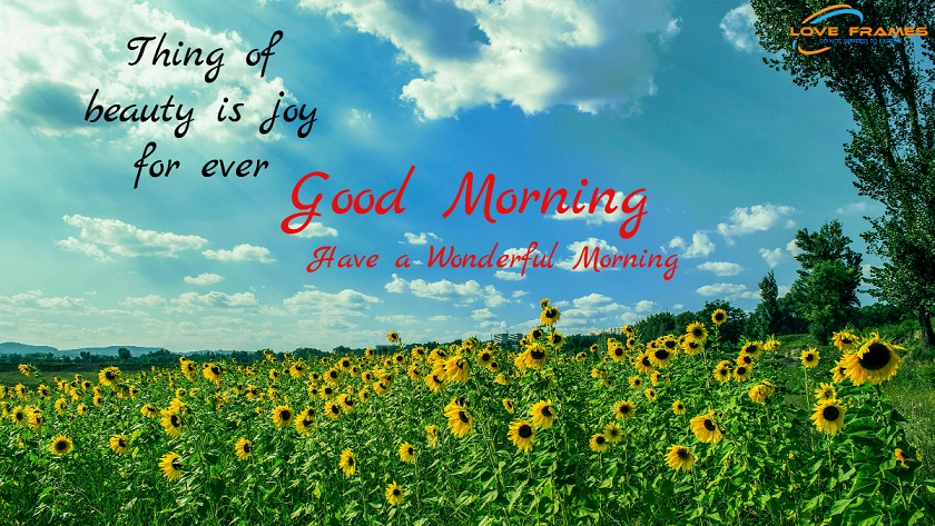 Good Morning Quotes With Images! Beautiful Good Morning Quotes
