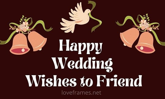 Wedding Wishes to Friend to Understand the Partner Rightly
