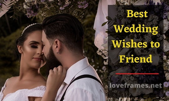 51 Best Wedding Wishes to Friend Ever on the Internet